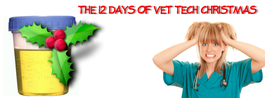 The 12 Days of a Vet Tech Christmas